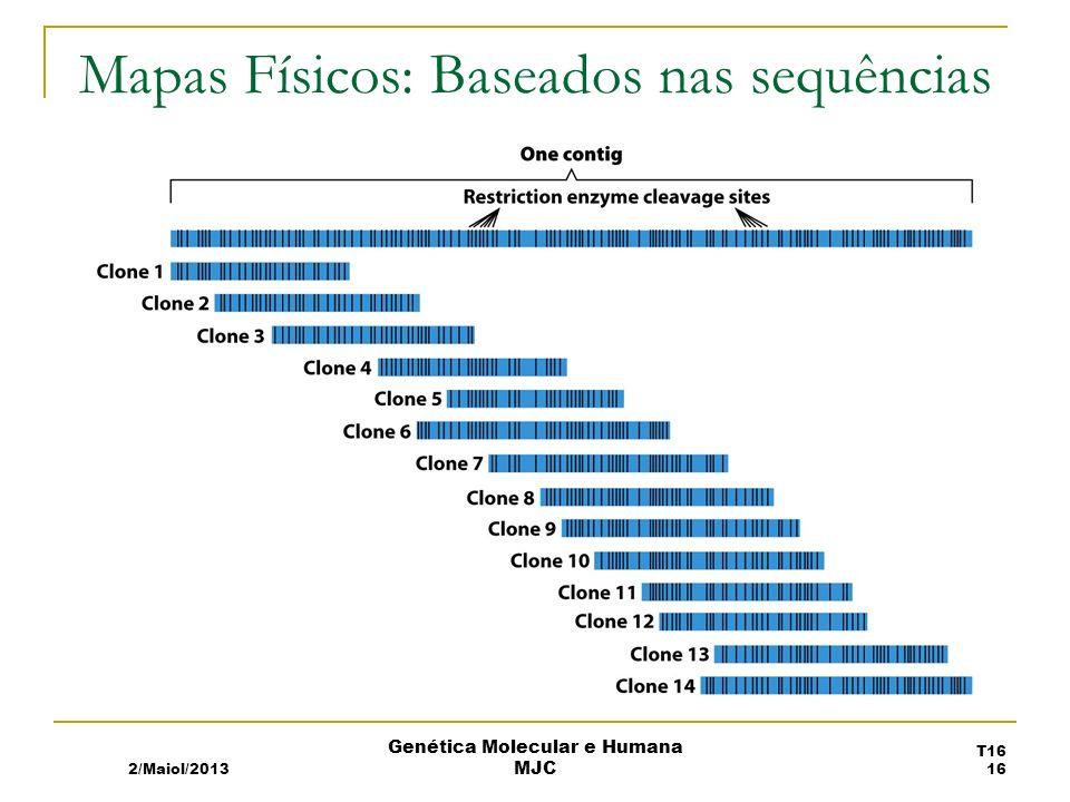 Mapas Físicos: Baseados nas sequências 2/Maiol/2013 T16 16 Genética Molecular e Humana MJC