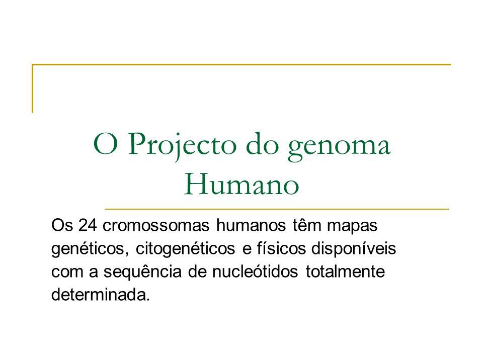 O Projecto do genoma Humano Os 24 cromossomas humanos têm mapas genéticos, citogenéticos e físicos disponíveis com a sequência de nucleótidos totalmente determinada.