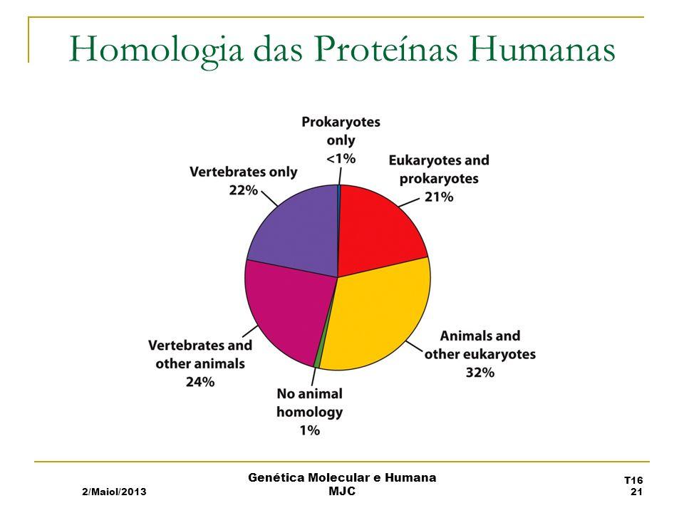Homologia das Proteínas Humanas 2/Maiol/2013 T16 21 Genética Molecular e Humana MJC