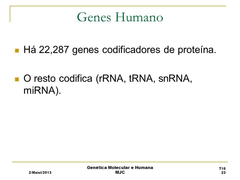 Genes Humano Há 22,287 genes codificadores de proteína.