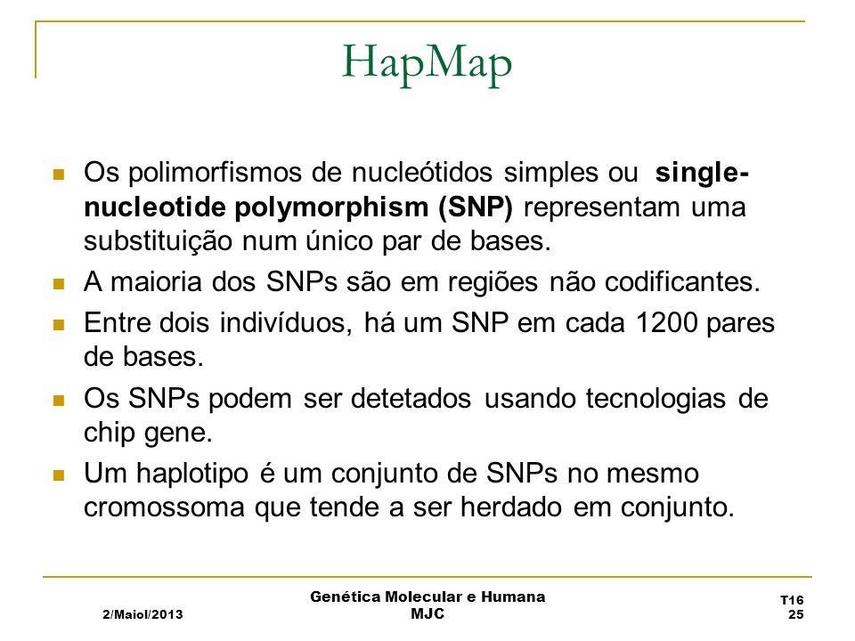 HapMap Os polimorfismos de nucleótidos simples ou single- nucleotide polymorphism (SNP) representam uma substituição num único par de bases.
