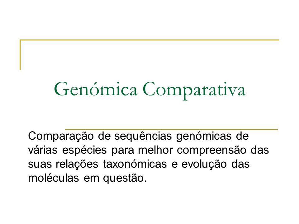 Genómica Comparativa Comparação de sequências genómicas de várias espécies para melhor compreensão das suas relações taxonómicas e evolução das moléculas em questão.