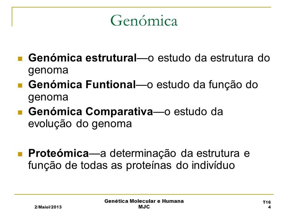 Genómica Genómica estruturalo estudo da estrutura do genoma Genómica Funtionalo estudo da função do genoma Genómica Comparativao estudo da evolução do genoma Proteómicaa determinação da estrutura e função de todas as proteínas do indivíduo 2/Maiol/2013 T16 4 Genética Molecular e Humana MJC