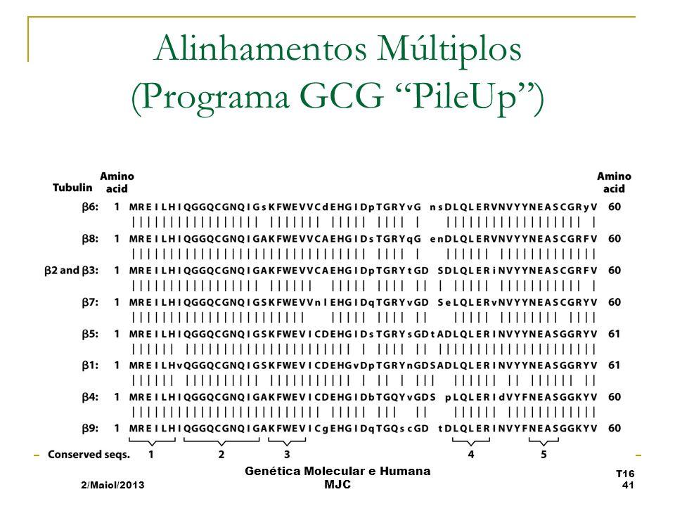Alinhamentos Múltiplos (Programa GCG PileUp) 2/Maiol/2013 T16 41 Genética Molecular e Humana MJC