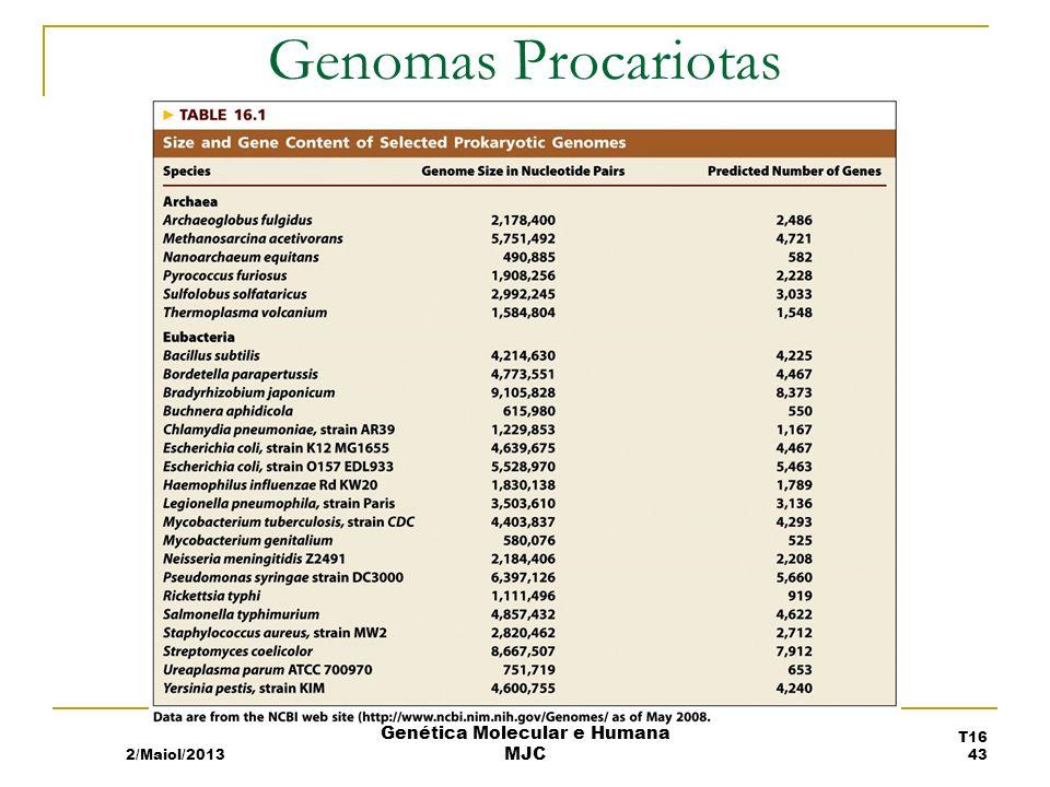 Genomas Procariotas 2/Maiol/2013 T16 43 Genética Molecular e Humana MJC