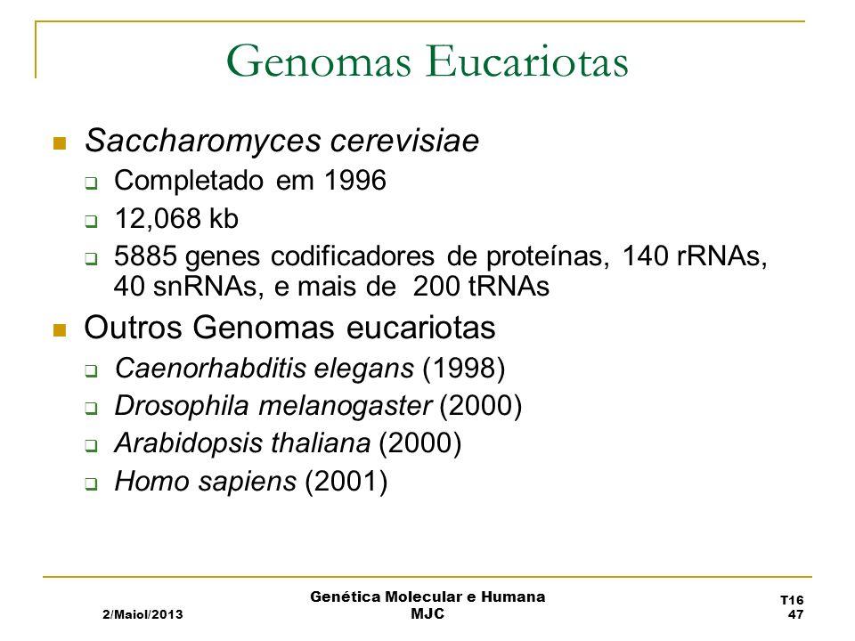 Genomas Eucariotas Saccharomyces cerevisiae Completado em 1996 12,068 kb 5885 genes codificadores de proteínas, 140 rRNAs, 40 snRNAs, e mais de 200 tRNAs Outros Genomas eucariotas Caenorhabditis elegans (1998) Drosophila melanogaster (2000) Arabidopsis thaliana (2000) Homo sapiens (2001) 2/Maiol/2013 T16 47 Genética Molecular e Humana MJC