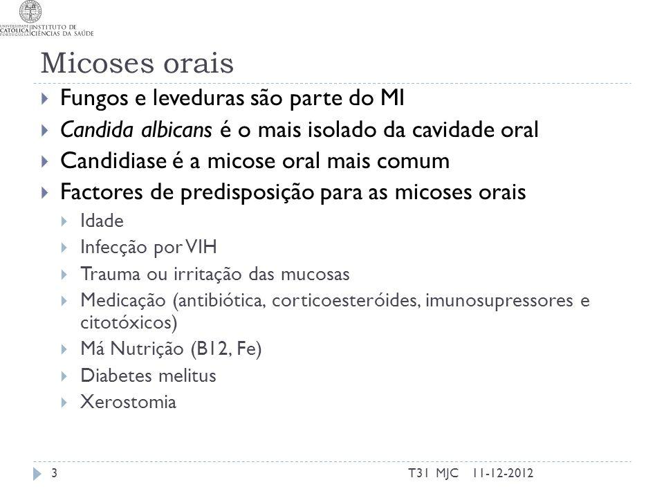 Micoses orais Fungos e leveduras são parte do MI Candida albicans é o mais isolado da cavidade oral Candidiase é a micose oral mais comum Factores de