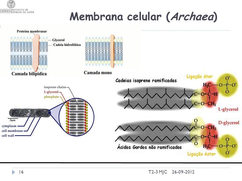T2-3 MJC16 Membrana celular (Archaea) 26-09-2012