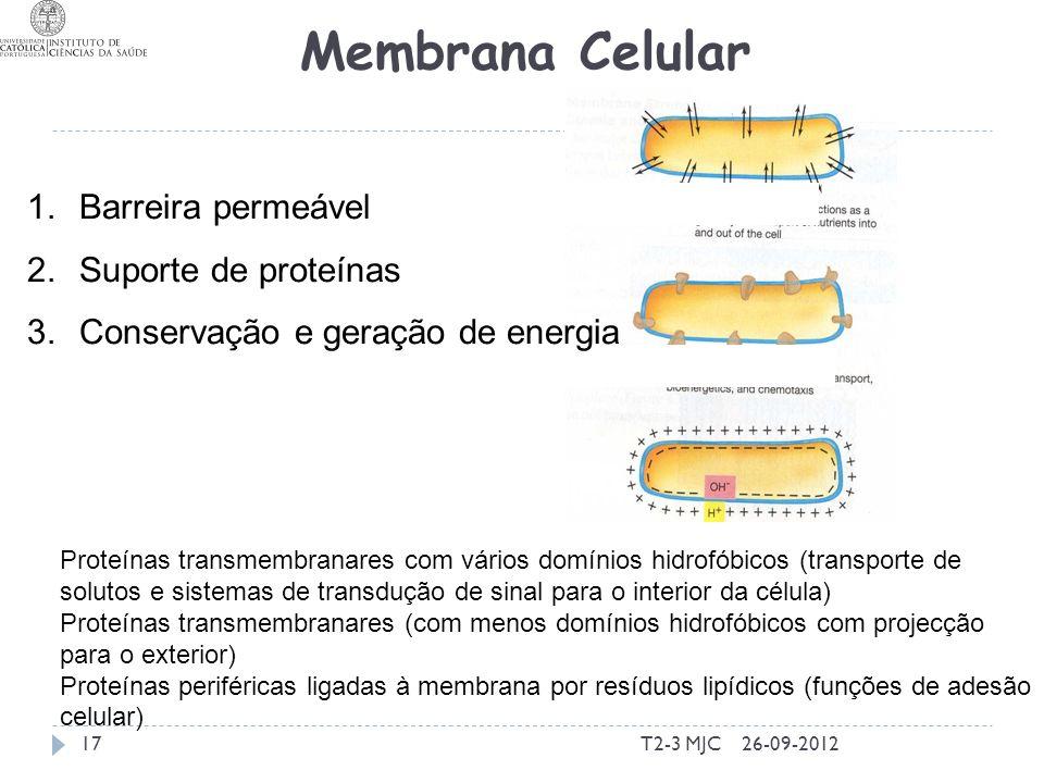 T2-3 MJC17 Membrana Celular 1.Barreira permeável 2.Suporte de proteínas 3.Conservação e geração de energia 26-09-2012 Proteínas transmembranares com v