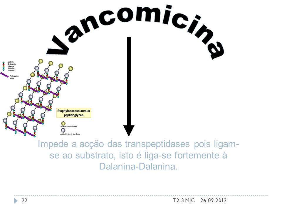 T2-3 MJC22 Impede a acção das transpeptidases pois ligam- se ao substrato, isto é liga-se fortemente à Dalanina-Dalanina. 26-09-2012