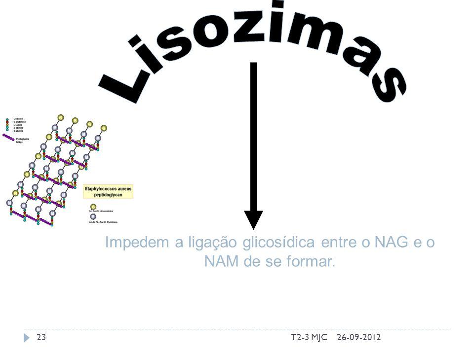 T2-3 MJC23 Impedem a ligação glicosídica entre o NAG e o NAM de se formar. 26-09-2012