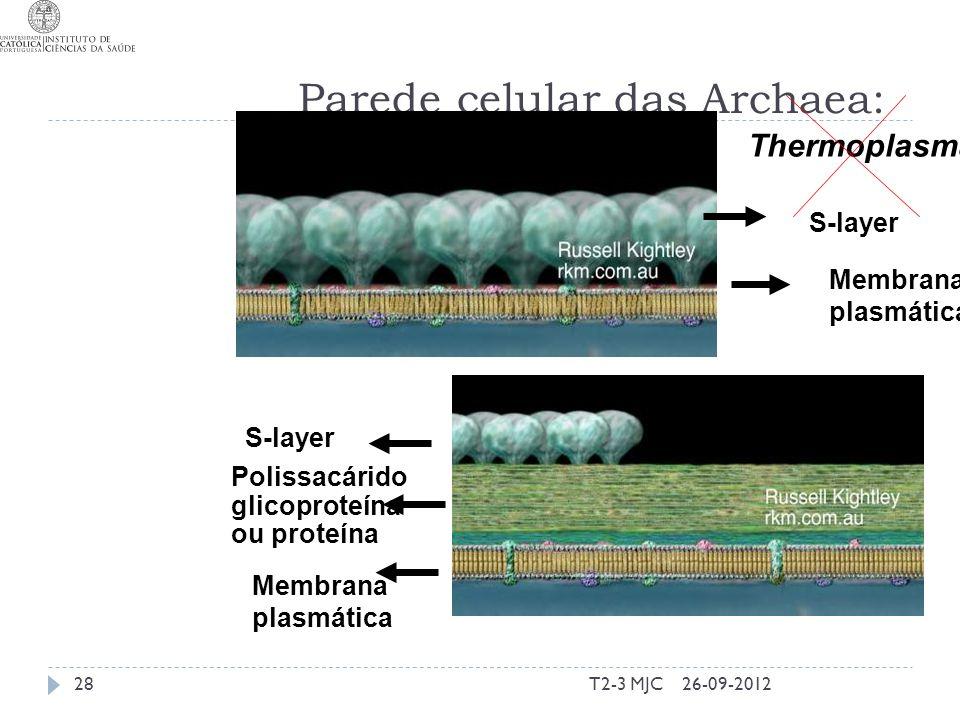 T2-3 MJC28 Parede celular das Archaea: S-layer Polissacárido glicoproteína ou proteína Membrana plasmática Membrana plasmática Thermoplasma 26-09-2012