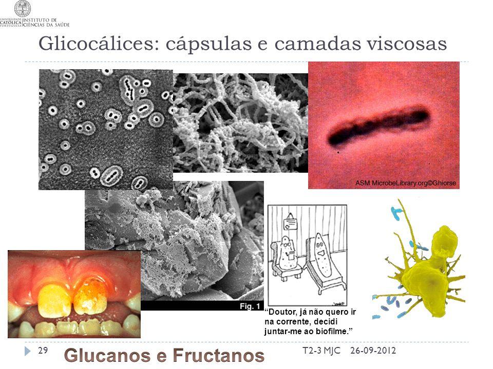 Glicocálices: cápsulas e camadas viscosas T2-3 MJC29 Doutor, já não quero ir na corrente, decidi juntar-me ao biofilme.