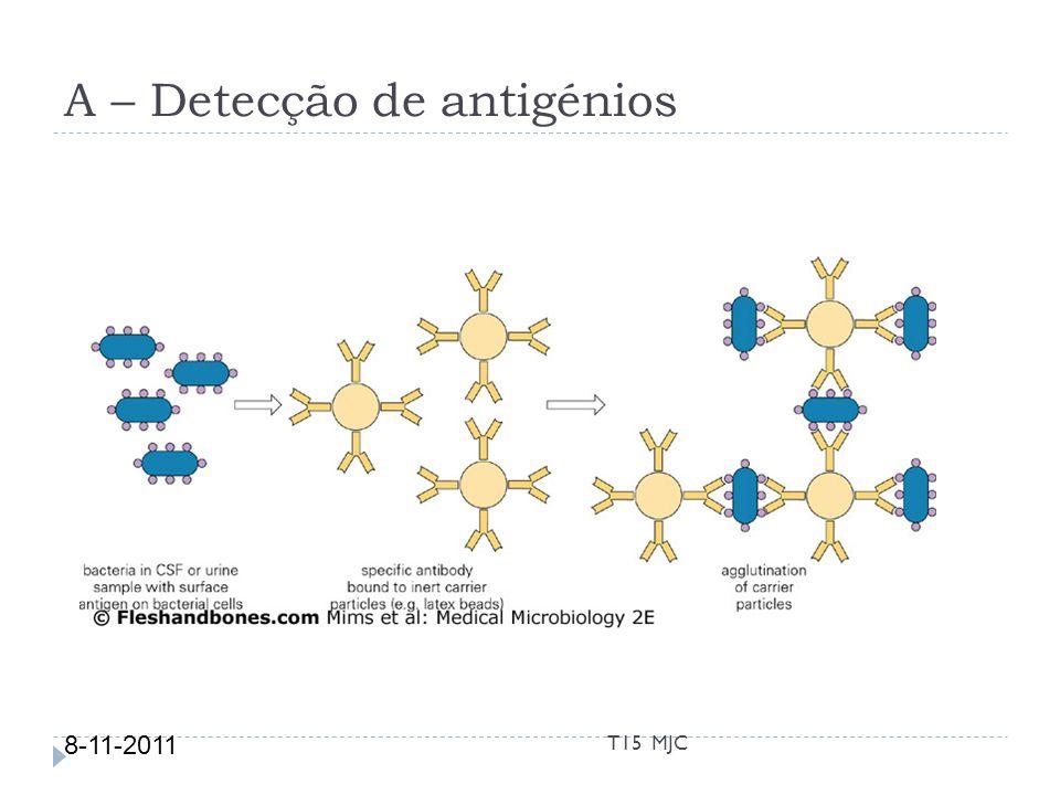 A – Detecção de antigénios Detecção de Proteínas 8-11-2011 T15 MJC
