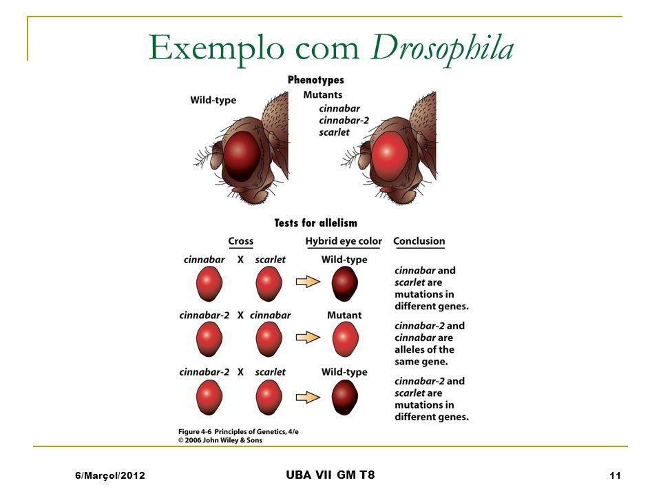 Exemplo com Drosophila 6/Marçol/201211 UBA VII GM T8
