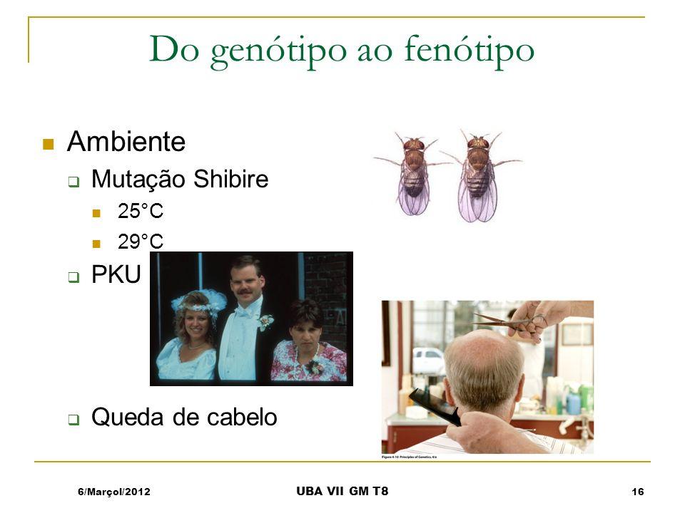 Do genótipo ao fenótipo Ambiente Mutação Shibire 25°C 29°C PKU Queda de cabelo 6/Marçol/201216 UBA VII GM T8