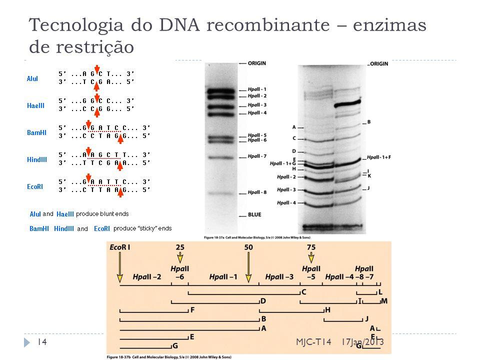 Tecnologia do DNA recombinante – enzimas de restrição 17Jan/201314MJC-T14