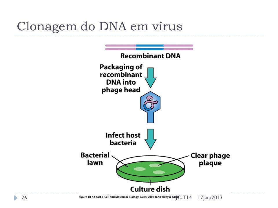 Clonagem do DNA em vírus 17Jan/2013MJC-T1426