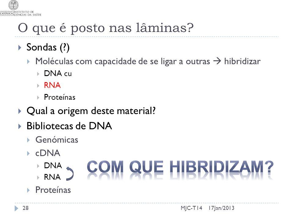 O que é posto nas lâminas? Sondas (?) Moléculas com capacidade de se ligar a outras hibridizar DNA cu RNA Proteínas Qual a origem deste material? Bibl