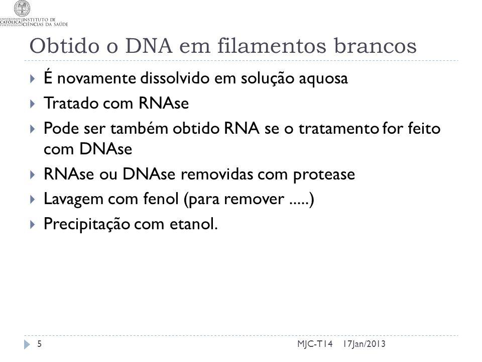 Obtido o DNA em filamentos brancos É novamente dissolvido em solução aquosa Tratado com RNAse Pode ser também obtido RNA se o tratamento for feito com