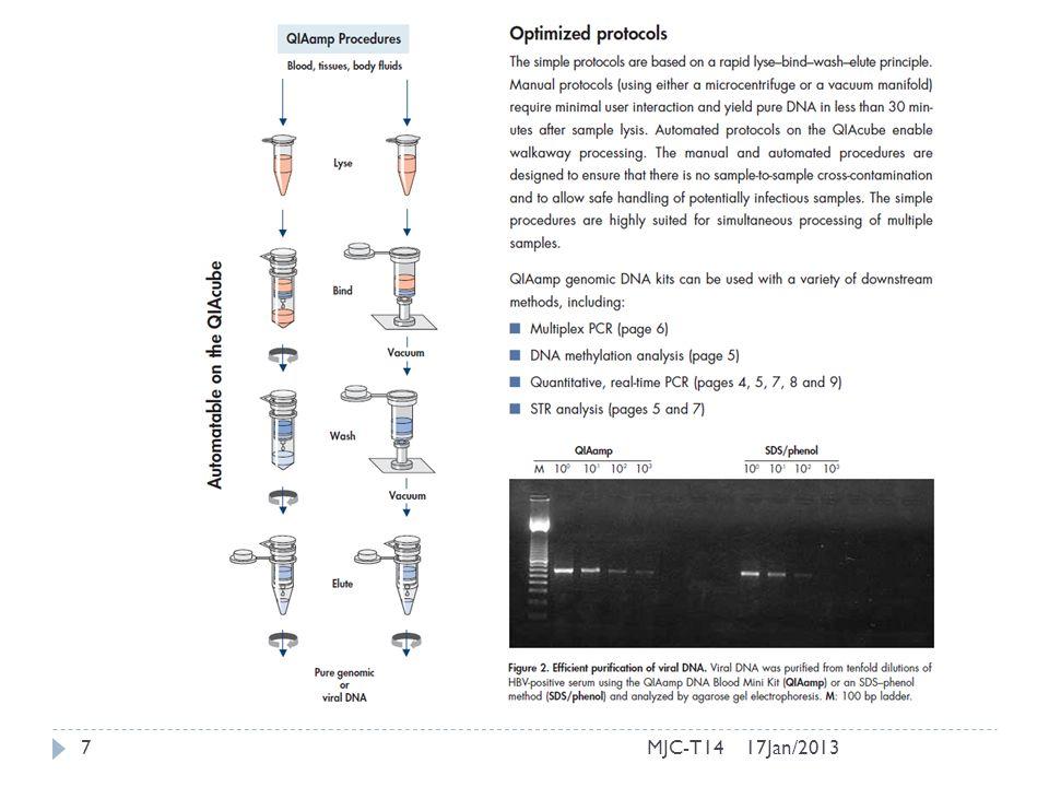 17Jan/201318MJC-T14 Clonagem do DNA em bactérias