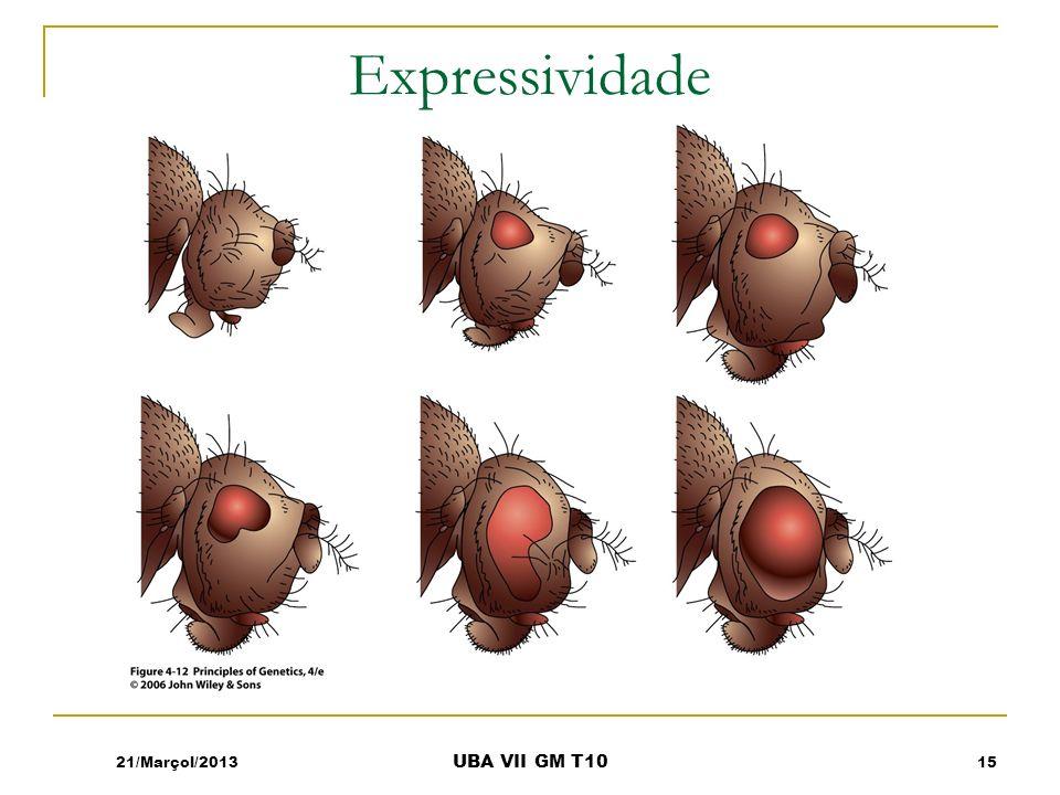Expressividade 21/Marçol/201315 UBA VII GM T10