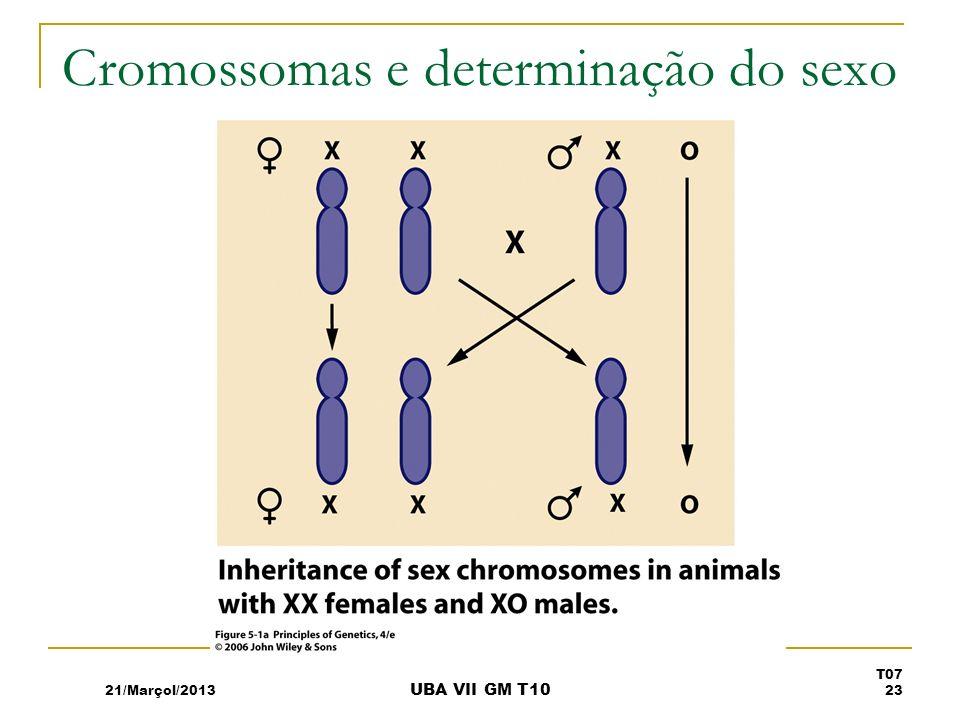 Cromossomas e determinação do sexo 21/Marçol/2013 T07 23 UBA VII GM T10