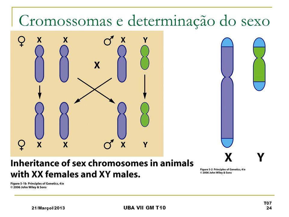 Cromossomas e determinação do sexo 21/Marçol/2013 T07 24 UBA VII GM T10