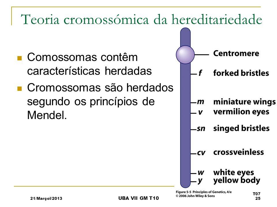 Teoria cromossómica da hereditariedade Comossomas contêm características herdadas Cromossomas são herdados segundo os princípios de Mendel. 21/Marçol/