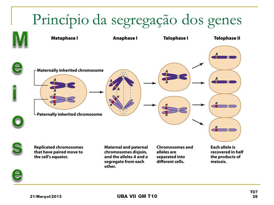 Princípio da segregação dos genes 21/Marçol/2013 T07 26 UBA VII GM T10