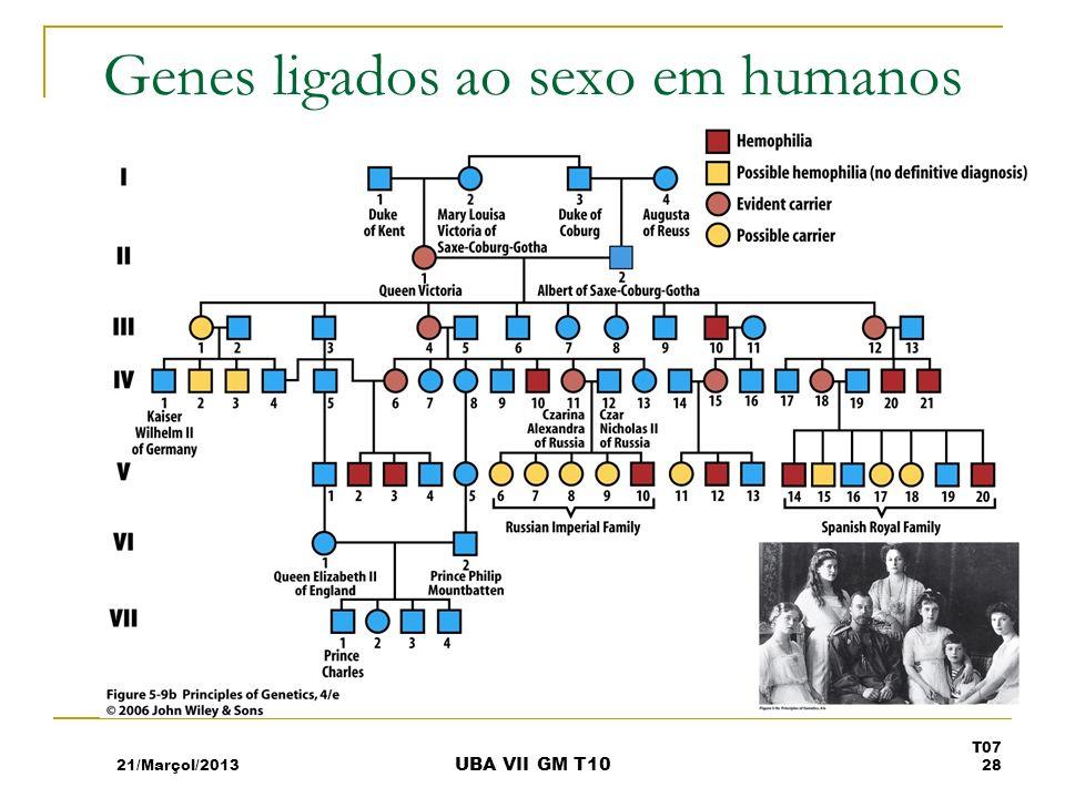 Genes ligados ao sexo em humanos 21/Marçol/2013 T07 28 UBA VII GM T10