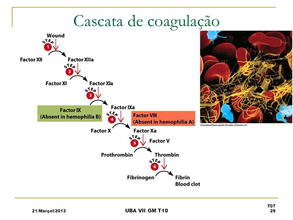 Cascata de coagulação 21/Marçol/2013 T07 29 UBA VII GM T10
