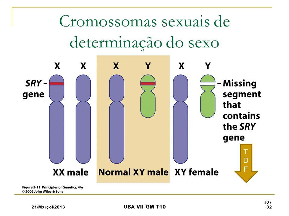 Cromossomas sexuais de determinação do sexo TDFTDF 21/Marçol/2013 T07 32 UBA VII GM T10