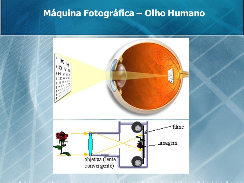 A câmara fotográfica é, estruturalmente, um olho.