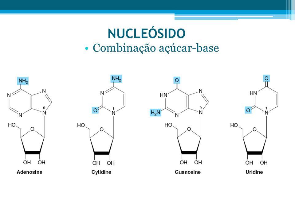 NUCLEÓSIDO Combinação açúcar-base