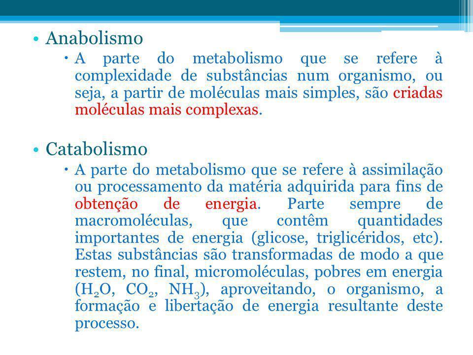 Anabolismo A parte do metabolismo que se refere à complexidade de substâncias num organismo, ou seja, a partir de moléculas mais simples, são criadas