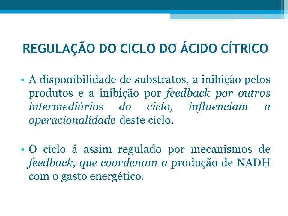 REGULAÇÃO DO CICLO DO ÁCIDO CÍTRICO A disponibilidade de substratos, a inibição pelos produtos e a inibição por feedback por outros intermediários do