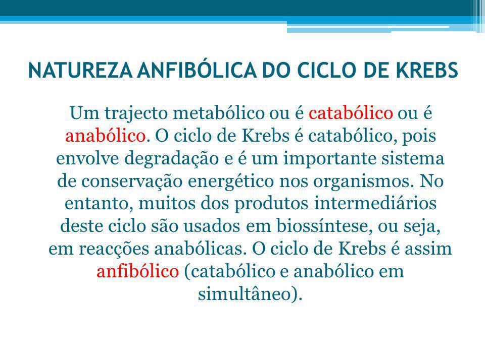 NATUREZA ANFIBÓLICA DO CICLO DE KREBS Um trajecto metabólico ou é catabólico ou é anabólico. O ciclo de Krebs é catabólico, pois envolve degradação e