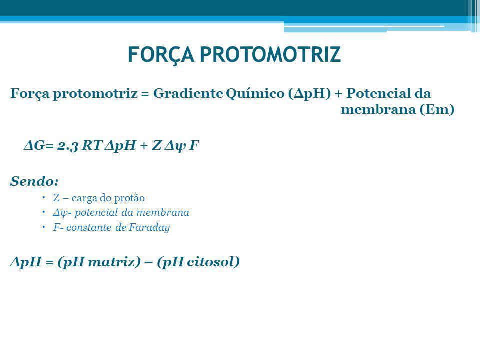 FORÇA PROTOMOTRIZ Força protomotriz = Gradiente Químico (pH) + Potencial da membrana (Em) G= 2.3 RT pH + Z ψ F Sendo: Z – carga do protão ψ- potencial