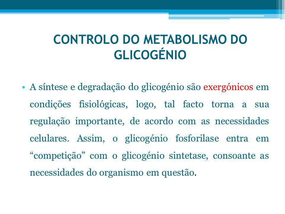 CONTROLO DO METABOLISMO DO GLICOGÉNIO A síntese e degradação do glicogénio são exergónicos em condições fisiológicas, logo, tal facto torna a sua regu