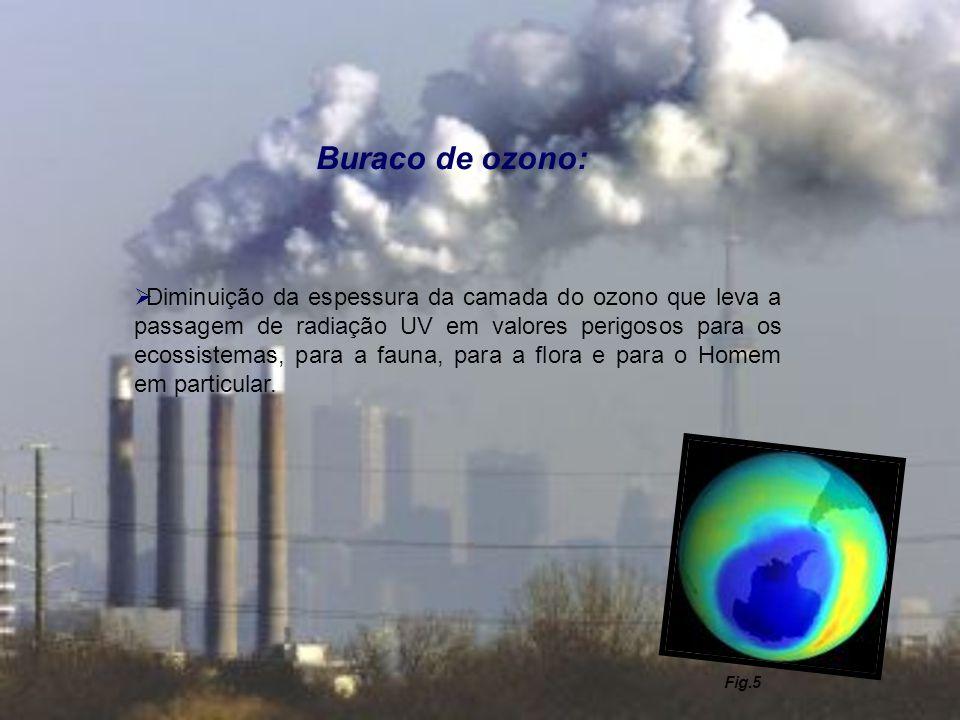 Buraco de ozono: Diminuição da espessura da camada do ozono que leva a passagem de radiação UV em valores perigosos para os ecossistemas, para a fauna