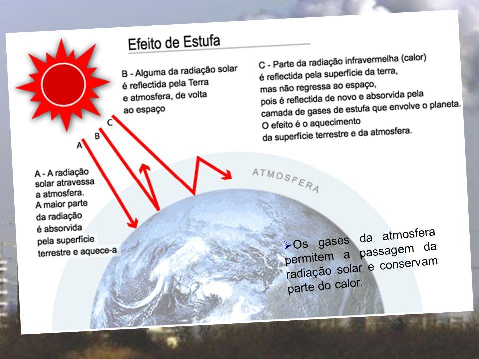 Buraco de ozono: Diminuição da espessura da camada do ozono que leva a passagem de radiação UV em valores perigosos para os ecossistemas, para a fauna, para a flora e para o Homem em particular.
