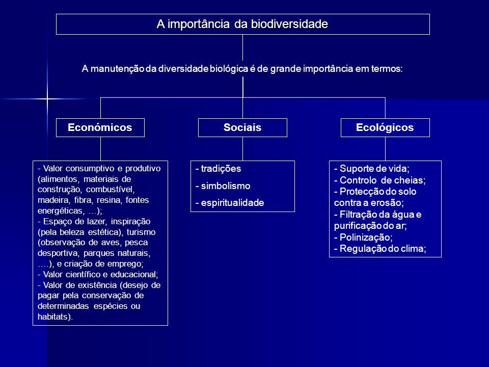 A importância da biodiversidade A manutenção da diversidade biológica é de grande importância em termos: Económicos - tradições - simbolismo - espirit