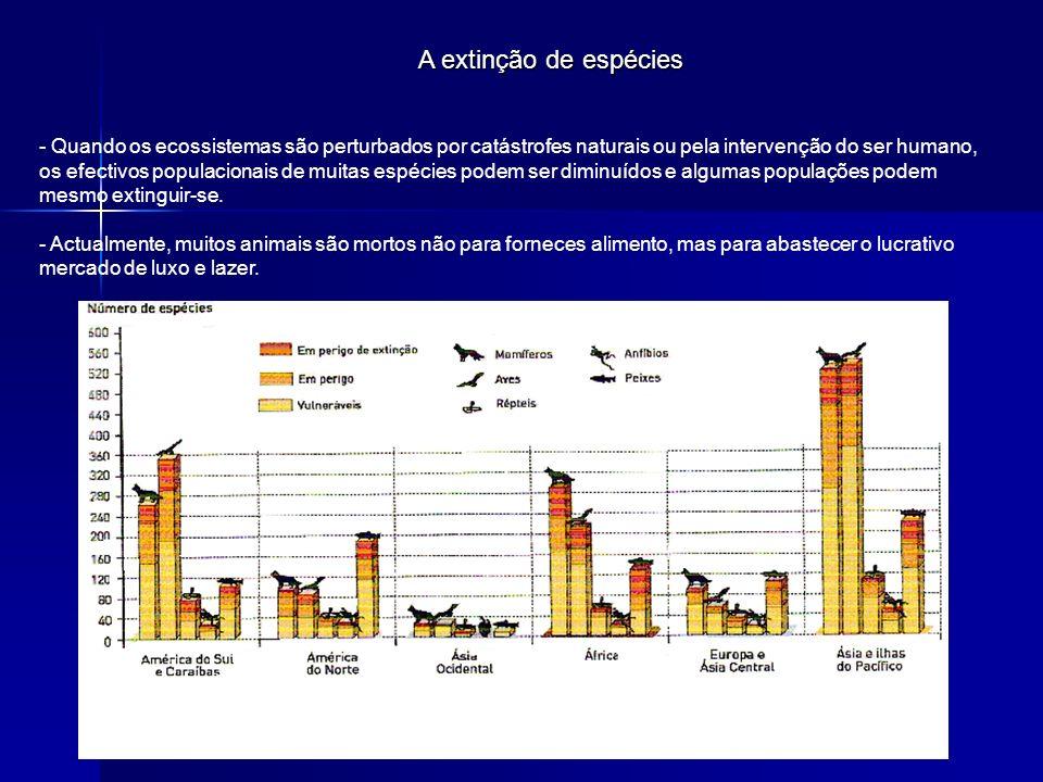 A extinção de espécies - Quando os ecossistemas são perturbados por catástrofes naturais ou pela intervenção do ser humano, os efectivos populacionais