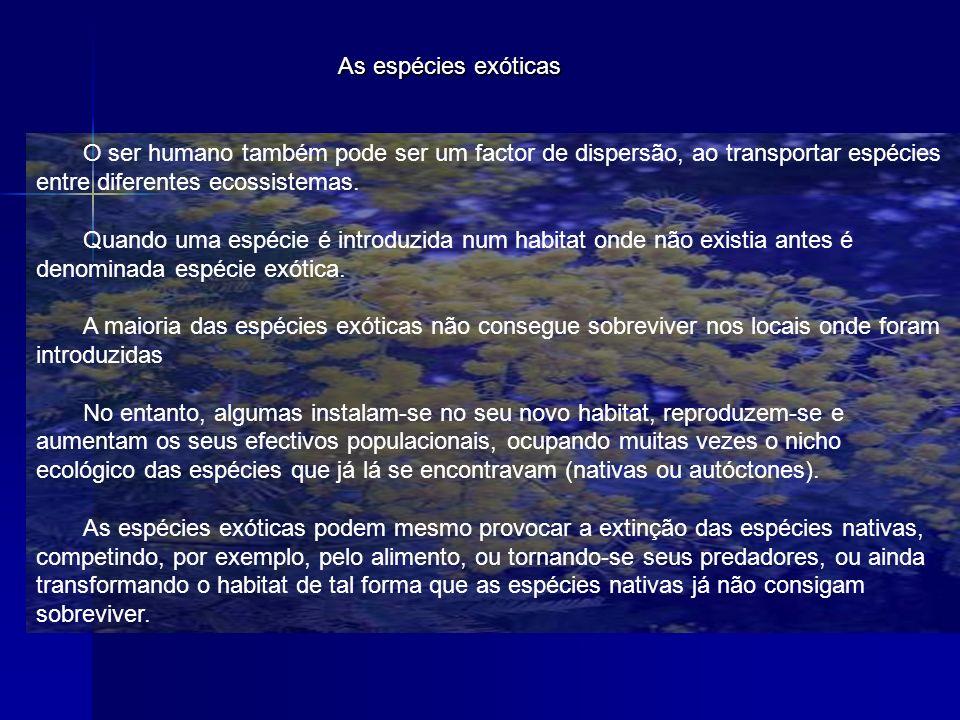 As espécies exóticas O ser humano também pode ser um factor de dispersão, ao transportar espécies entre diferentes ecossistemas. Quando uma espécie é