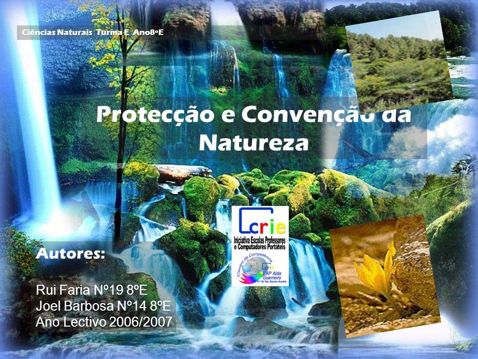 Ciências Naturais Turma E Ano8ºE Protecção e Convenção da Natureza Autores: Rui Faria Nº19 8ºE Joel Barbosa Nº14 8ºE Ano Lectivo 2006/2007