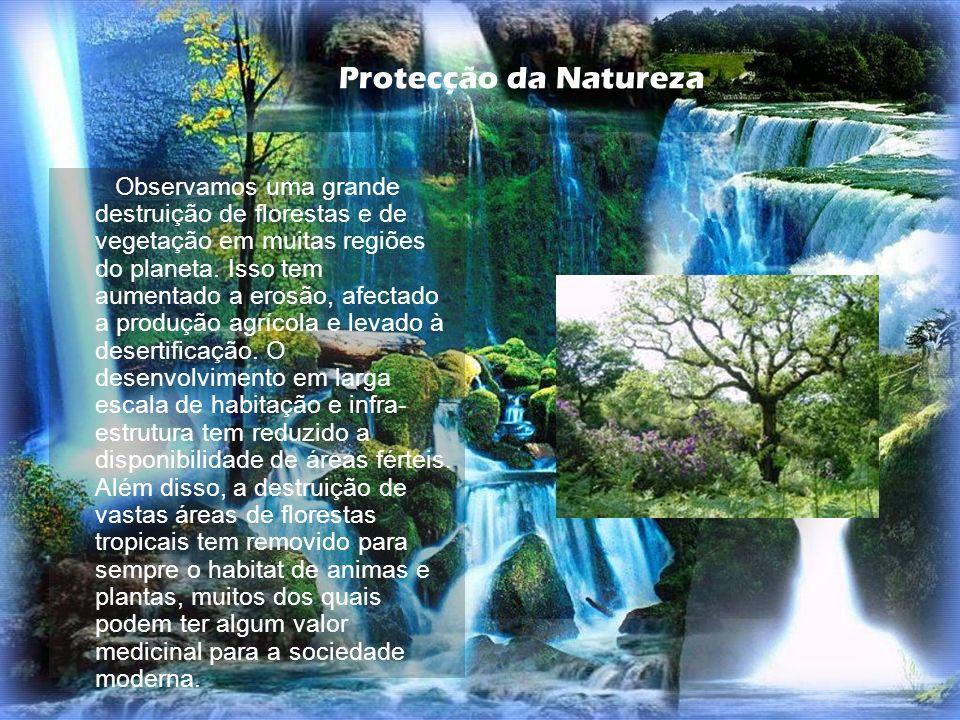Observamos uma grande destruição de florestas e de vegetação em muitas regiões do planeta. Isso tem aumentado a erosão, afectado a produção agrícola e