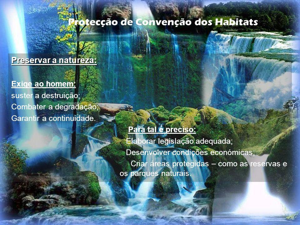 Preservar a natureza: Exige ao homem: suster a destruição; Combater a degradação; Garantir a continuidade. Para tal é preciso: Elaborar legislação ade