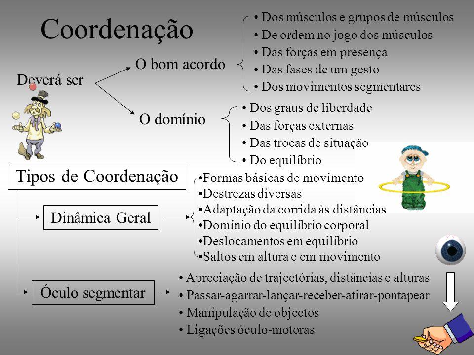 Coordenação Deverá ser O bom acordo Dos músculos e grupos de músculos De ordem no jogo dos músculos Das forças em presença Das fases de um gesto Dos m