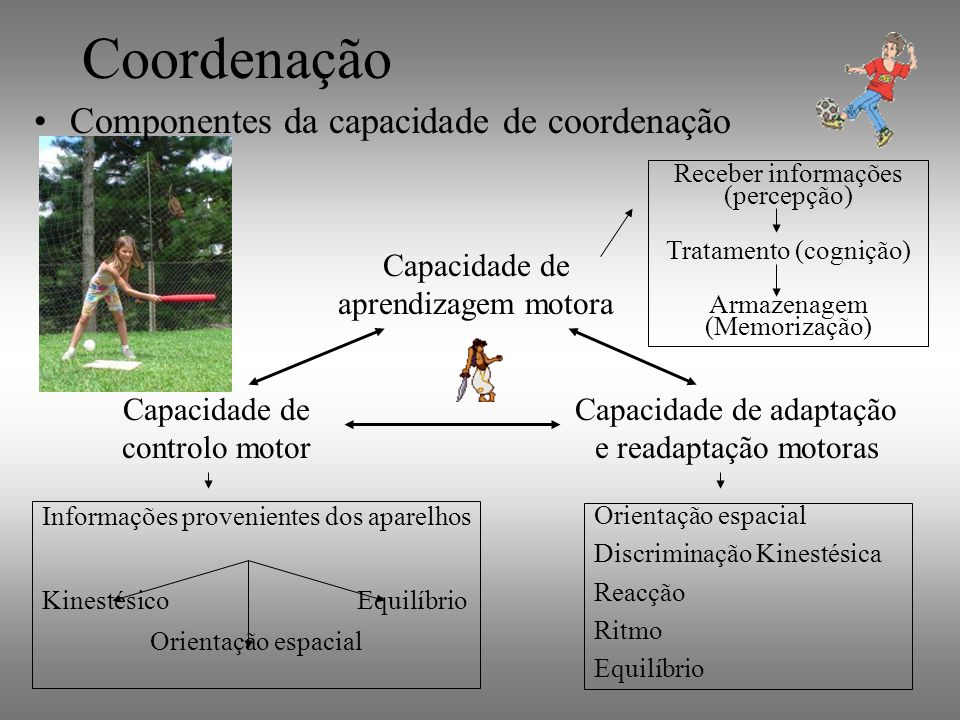 Coordenação Componentes da capacidade de coordenação Capacidade de aprendizagem motora Capacidade de controlo motor Capacidade de adaptação e readapta